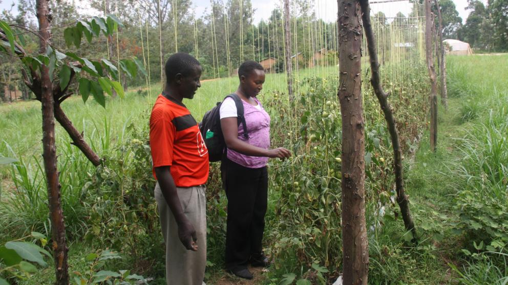 IASS researcher Serah Kiragu talks with a Kenyan farmer about his experience of putting new land management methods into practice.