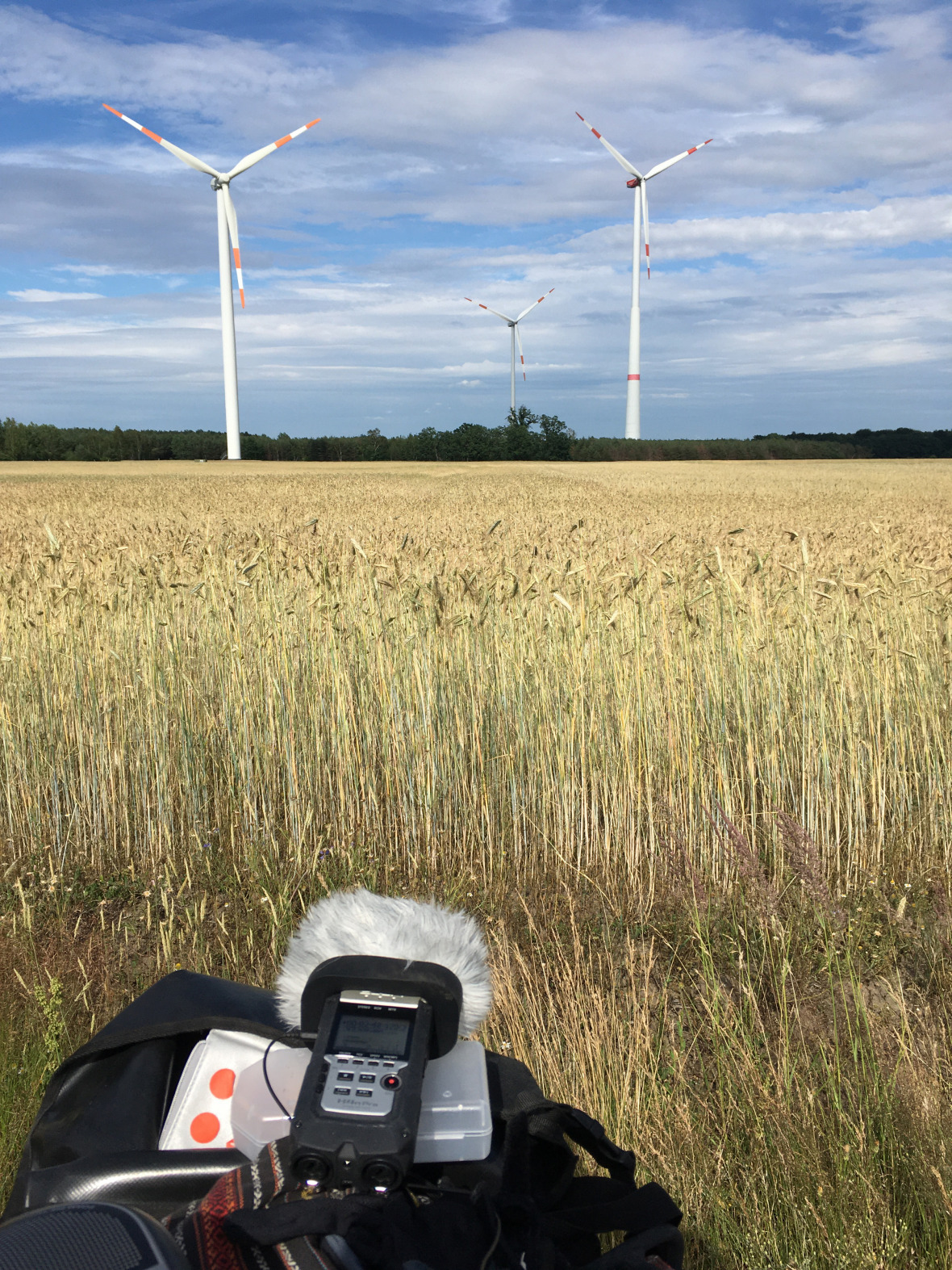 Wind turbines, sound recorder: gathering the voice of the land in Lusatia.