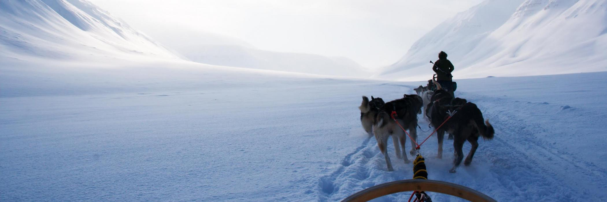 Dogsled in Svalbard, Norway.