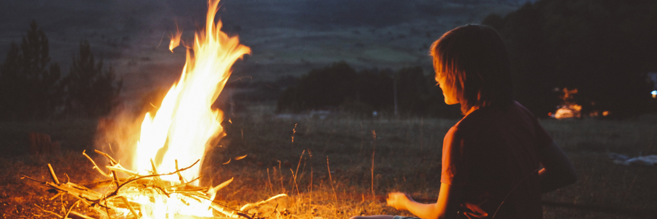 The log and the flame: what fire can teach us about the transformation towards sustainability