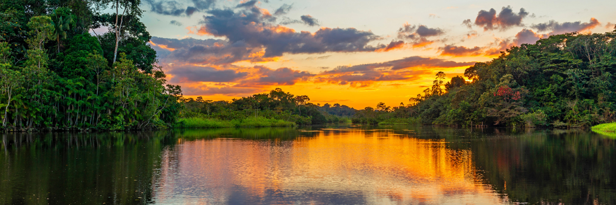 Reflection of a sunset by a lagoon inside the Amazon Rainforest Basin.