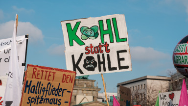 cabbage vs coal phase out coal Berlin