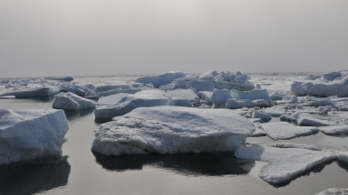Climate change and economic activities are having adverse effects on the Arctic.