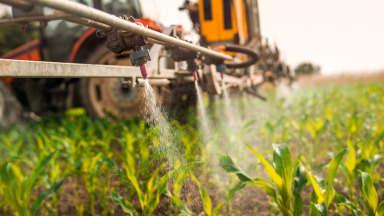 What risks does the use of pesticides present?
