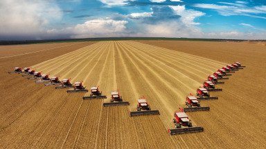 Combines harvest soybeans in Brazil: Higher ozone concentrations reduces the yields of many crops.
