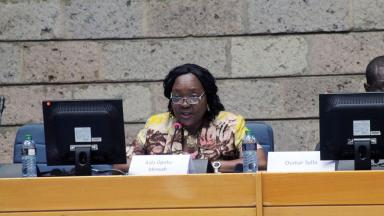 Aida Opoku-Mensah von der United Nations Economic Commission for Africa (UNECA) (c) IISD Reporting Services